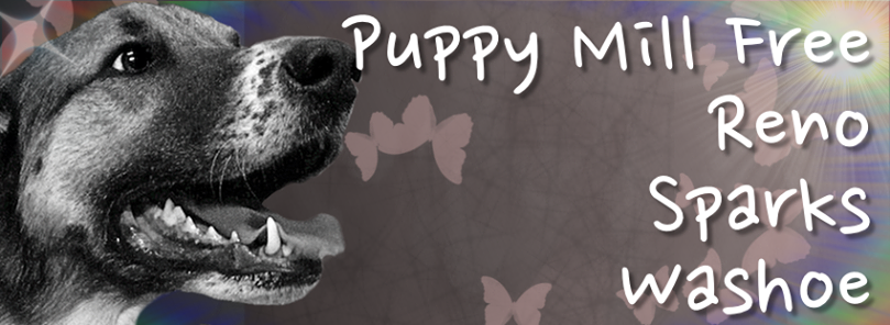 Puppy Mill Free Reno/Sparks/Washoe